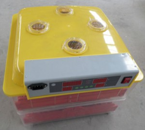 Fully-automatic-mini-egg-incubator-WQ-72