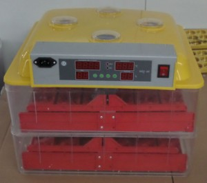 Weiqian-brand-mini-egg-incubator-72-eggs