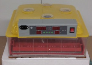 chicken-goose-incubator-WQ-72-home-use